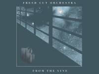 Video Premiere: Fresh Cut Orchestra - The Mother's Suite - I. Birth of a Child, Birth of a Mom